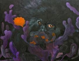 per procura VI, 2011